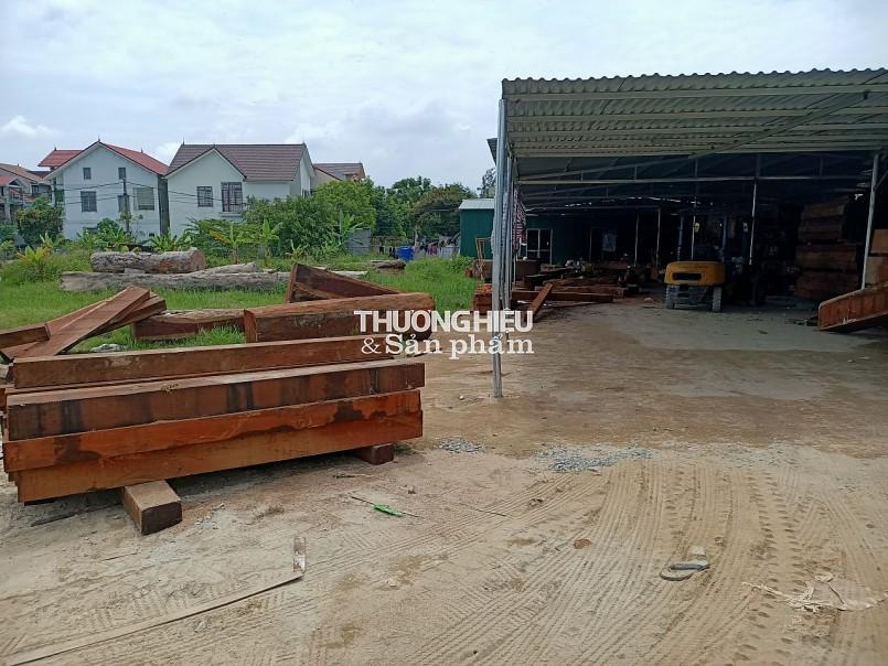 Hà Tĩnh: Xưởng gỗ trái phép thách thức chính quyền?