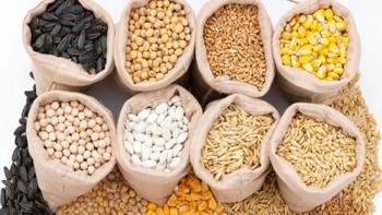 """Giá nguyên liệu thức ăn chăn nuôi tăng """"phi mã"""""""