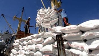 Dự báo Việt Nam vẫn đứng thứ 2 thế giới về xuất khẩu gạo