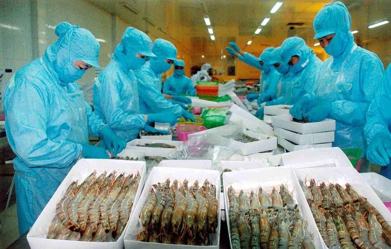 VASEP: Doanh nghiệp thủy sản muốn được lựa chọn hình thức kiểm dịch