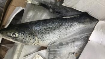 Đồng Nai: Ngăn chặn kịp thời gần 2,5 tấn cá hồi hết hạn sử dụng