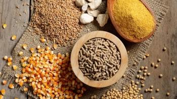 Sửa đổi quy định Giấy chứng nhận lưu hành tự do với thức ăn chăn nuôi