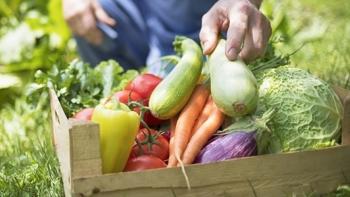 Bảo đảm an toàn thực phẩm trong lĩnh vực nông nghiệp năm 2021