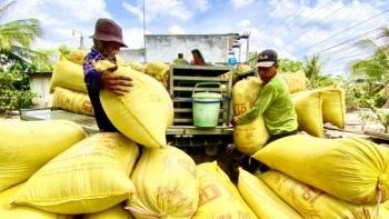 Xuất khẩu gạo tăng tốc trở lại, thu về 362 triệu USD trong tháng 4