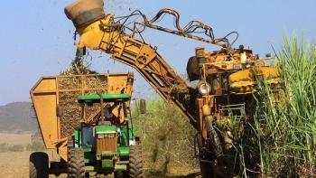 Danh sách một số doanh nghiệp xuất nhập khẩu đường của Brazil