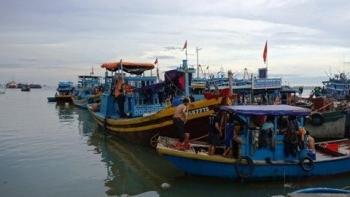 Nghệ An: Công bố mở hai cảng cá Quỳnh Phương và Cửa Hội