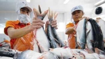 Chính phủ chỉ đạo theo dõi tình hình, xứ lý ách tắc xuất khẩu thủy sản sang Trung Quốc