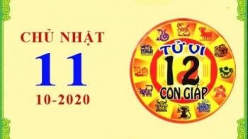 Tử vi Phương Đông 12 con giáp Chủ Nhật ngày 11/10/2020