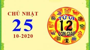 Tử vi Phương Đông 12 con giáp: Chủ Nhật ngày 25/10/2020