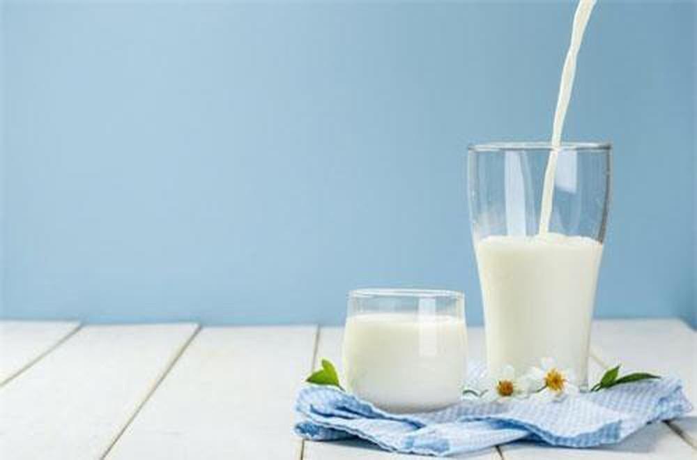 Sữa tươi giúp giải rượu bia hiệu quả