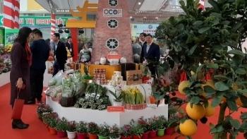 Hà Nội lên kế hoạch tổ chức Festival sản phẩm nông nghiệp và làng nghề