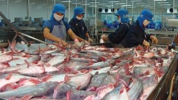 Xuất khẩu cá tra: Cơ cấu thị trường thay đổi, dự báo tích cực