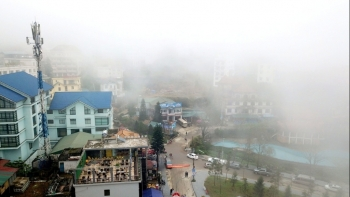Du lịch mùa lạnh: Tam Đảo - thành phố mờ sương