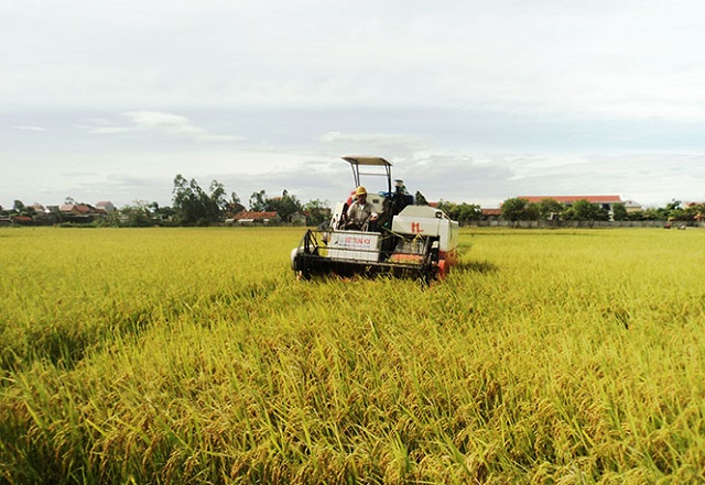 cơ giới hóa nông nghiệp