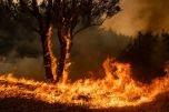 Hà Nội: Tăng cường công tác phòng cháy, chữa cháy rừng trong đợt nắng nóng kéo dài
