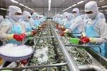 Tháo gỡ vướng mắc trong việc áp thuế đối với thủy sản chế biến và sơ chế