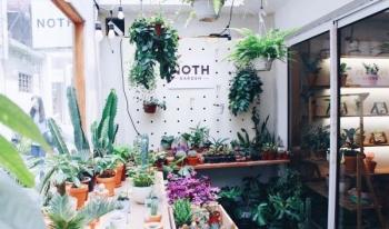 Những địa điểm check-in sống ảo tại Hà Nội: Khu tổ hợp mua sắm đẹp như phố Hàn