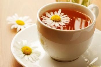Thuốc Đông y: Trà hoa cúc và công dụng đối với sức khỏe